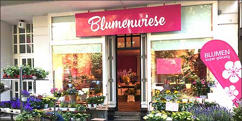 Blumenwiese in Hamburg